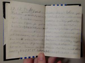 Kuva huippusalaisesta päiväkirjastani vuodelta 1994